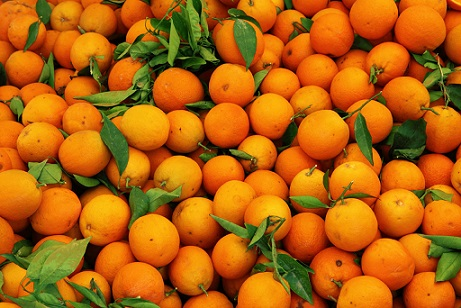 PQQ is suggested to be 5,000X more powerful than vitamin C as an antioxidant. That's a 1:5000 orange ratio. Think about it.
