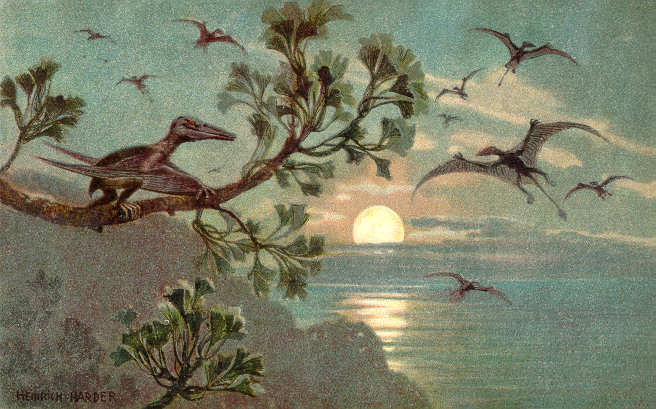 Ginkgo so old, Pterodactyls used to sit on em. True story. By Heinrich Harder (1858-1935) (The Wonderful Paleo Art of Heinrich Harder) [Public domain or Public domain], via Wikimedia Commons