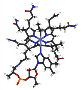Methylcobalamin. By Fvasconcellos 18:40, 30 April 2007 (UTC) (Own work, from ChEBI 28115.) [Public domain], via Wikimedia Commons