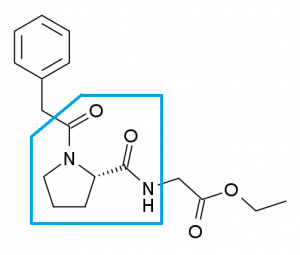 Noopept molecule (piracetam within blue box)