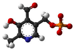 P-5-P is the better, active form of B6. By Jynto and Ben Mills [Public domain], via Wikimedia Commons