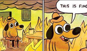 dog-burning-house
