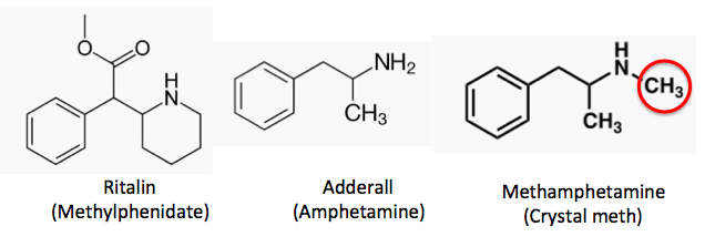 The Adderall Crash & Nootropic Comeback: How to Bounce Back