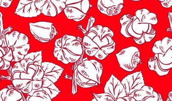 seamless red guarana