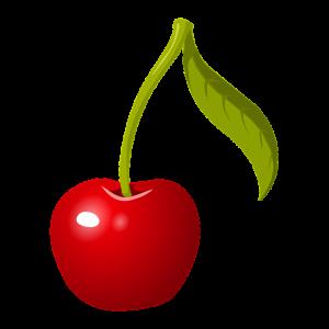 montmorency tart cherry