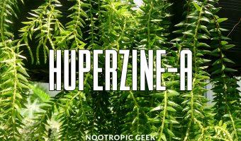 huperzine-a review